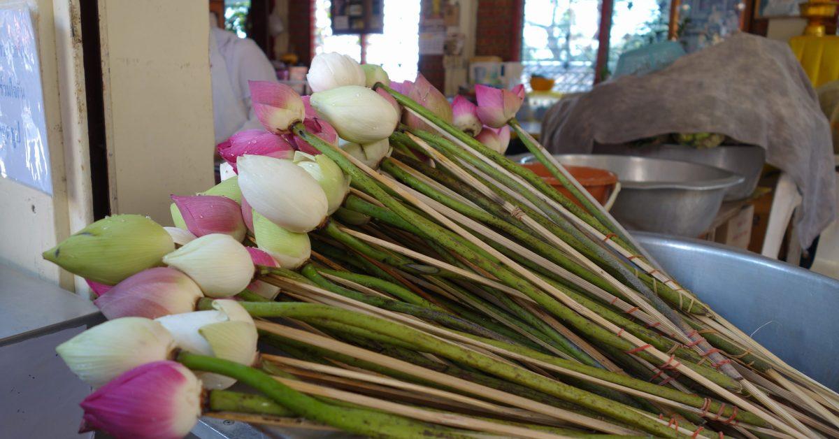 背包客與購物狂的泰國之旅:雙龍寺,尼曼購物 (四)