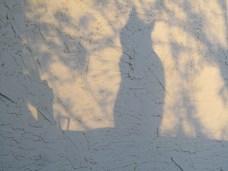Shadow II