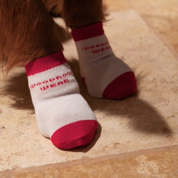 Woodrow Wear Power Paws Review and Giveaway!