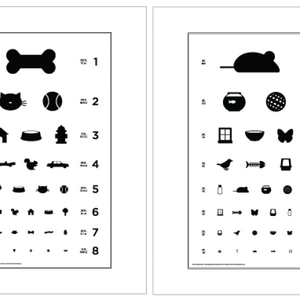 giveaway tuesday eye charts for dogs and cats from local paper studio