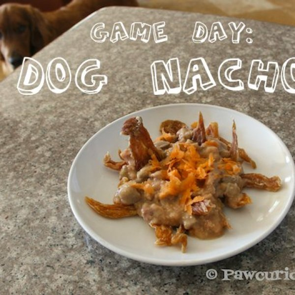 Game Day! With Pawcurean Dog Nachos