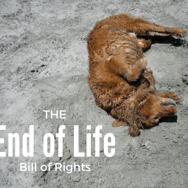 The Dying Pet's Bill of Rights