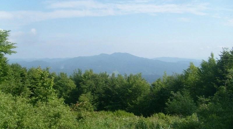 IX Bieg Rzeźnika - widok ze szczytu Jasło