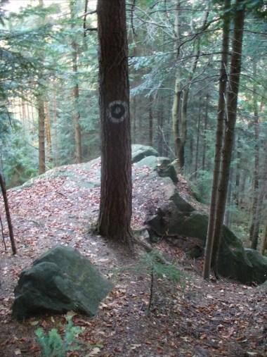diabelski kamień w beskidzie makowskim w okolicy działka