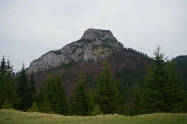 mały rozsutec w słowackiej małej fatrze, widok z przełęczy pod szczytem