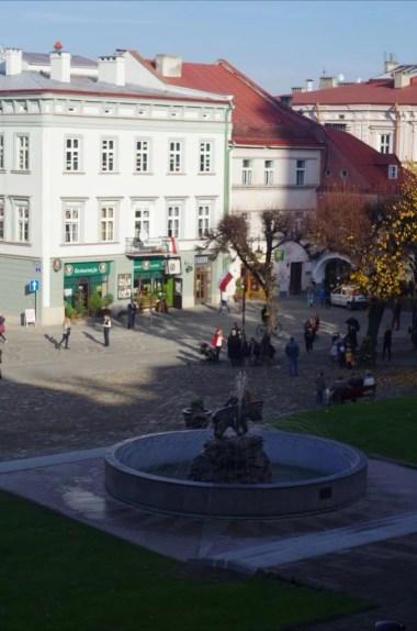 na rynku w przemyślu na podkarpaciu, widoczna figura niedźwiedzia, symbolu miasta