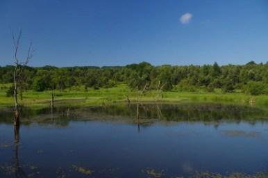 rezerwat przyrody źródliska jasiołki w beskidzie niskim w dolinie jasiela