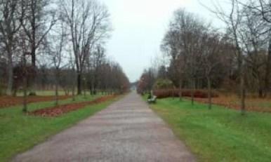 aleja parkowa w pobliżu pałacu kadriorg w tallinie w estonii