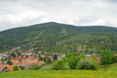 naddunajskie winnice w okolicy wzgórza devin pod bratysławą w słowacji