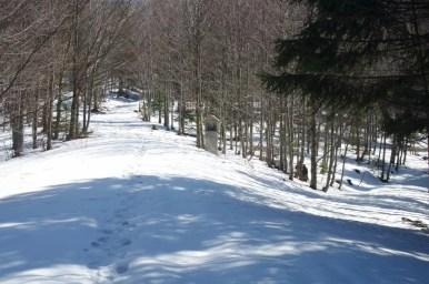 na zimowym szlaku z jurkowa na mogielicę, przy ścieżce widoczna kapliczka