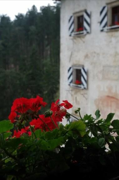 zamek predjama w słowenii