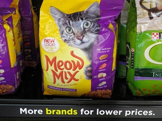 Tips - Feeding Your Cat on a Budget