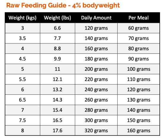 How much raw food to feed a cat check our cat feeding guides