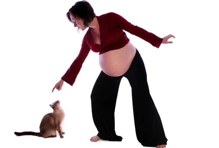 cats and pregnancy risks