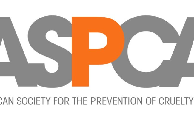 Aspca S Springtime Safety Tips Pawing Forward