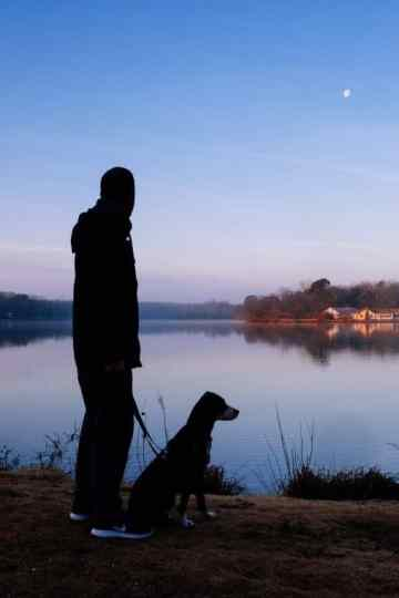 The Best Products for Walking Your Dog at Night