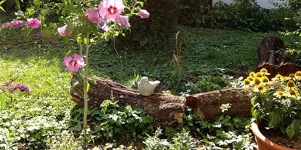 Raus in den Garten 3web