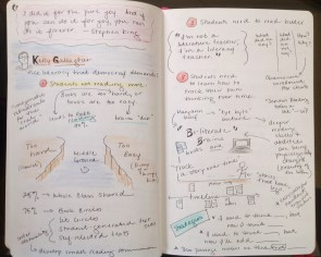 """Notes from Kelly Gallagher's """"Literacy for Democracy"""""""