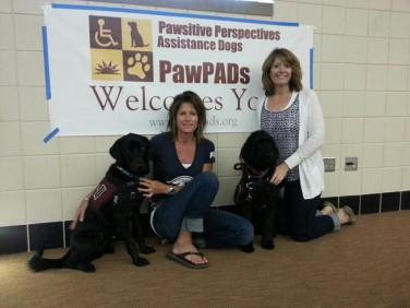image of school resource dogs Kali and Enzo