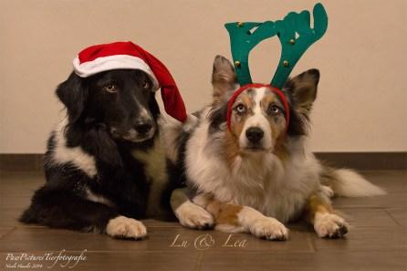 Lu & Lea