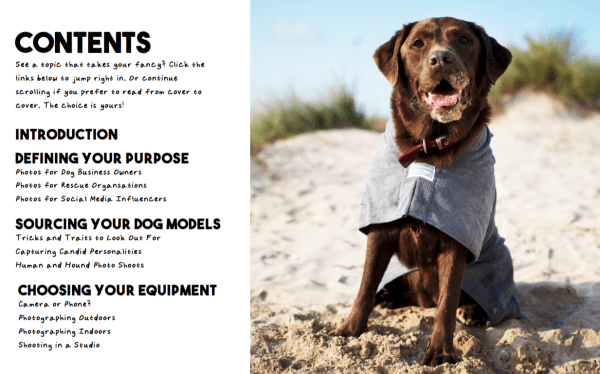Shutter Pups: Simple Steps to Improve Your Dog Photography Contents Page