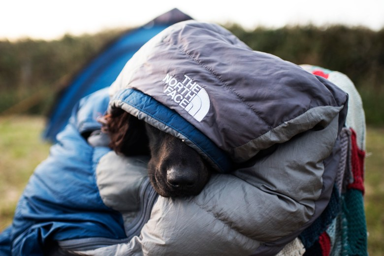 How to Find High Quality Outdoor Gear | Paws and Tors
