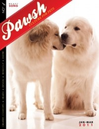 DOG HEALTH: DOG EAR INFECTIONS  Pawsh Magazine