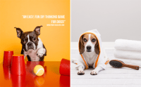 {SPONSORED} CRUMBS OUTFITTERS | Pawsh MAGAZINE & STUDIO