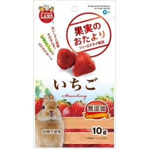 ML-84 天然凍乾水果草莓10g