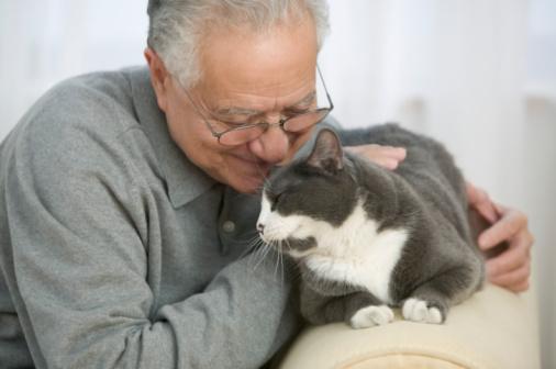 Senior loving his cat