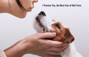 no fear of nail trims