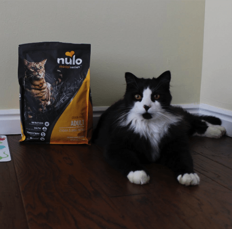 Cat Food Reviews >> 6 Nulo Cat Food Reviews Recalls Pros And Cons Pawsome Kitty