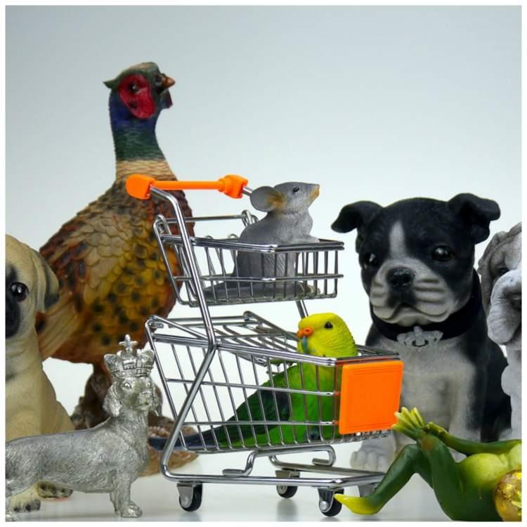 dog food on a budget