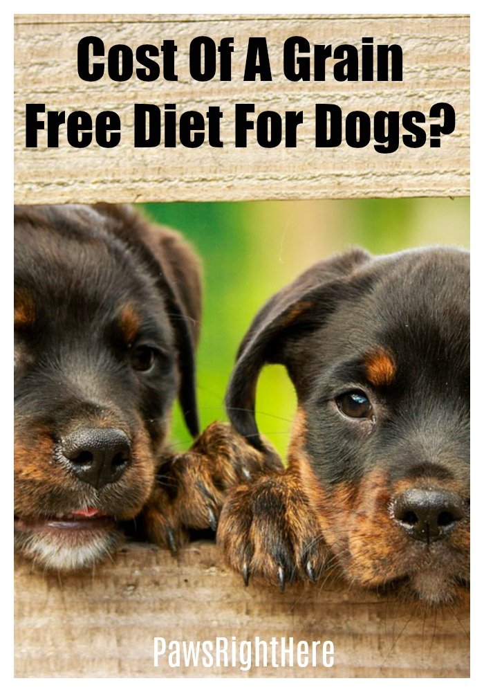Cost of a grain free diet for dogs