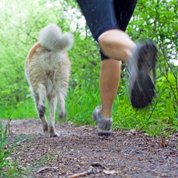 Running On A Trail With A Dog