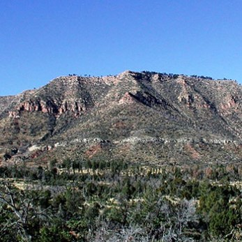 Hike the Mogollon Rim With Your Dog