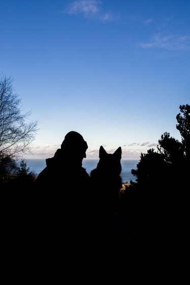 man and his dog silhouette