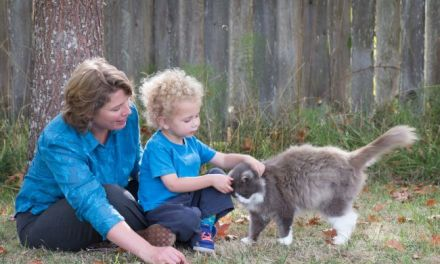How Cats Help Children with Depression