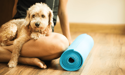 Practical or Pretentious: Yoga Classes for Pets