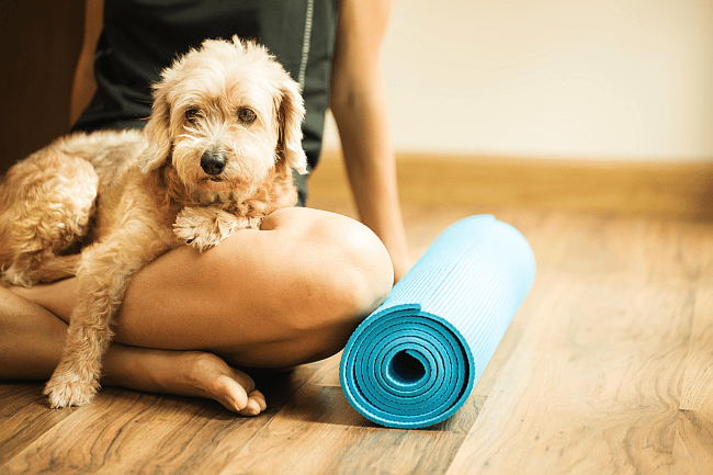 dog and owner with yoga mat