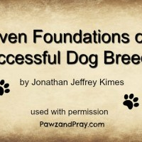 Seven Foundations For A Successful Dog Breeder [J.J. Kimes]