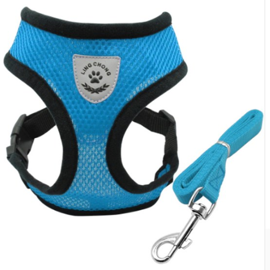 Dog Harness Leash 3
