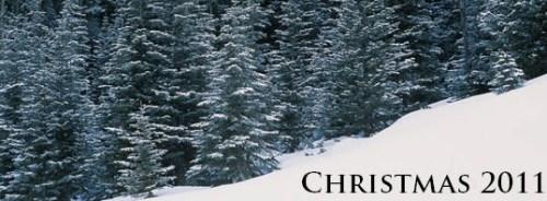 Christmas 2011 banner