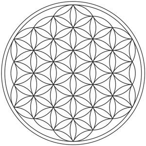 L'esagono a sei petali proprio del Fiore della Vita