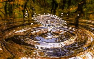 Acqua Organica