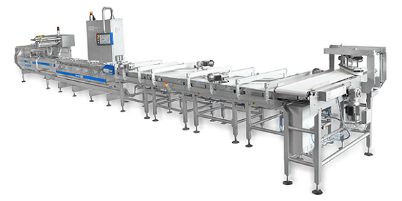 Automatic packaging Line for filled fruit bars