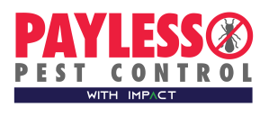 Payless with Impact