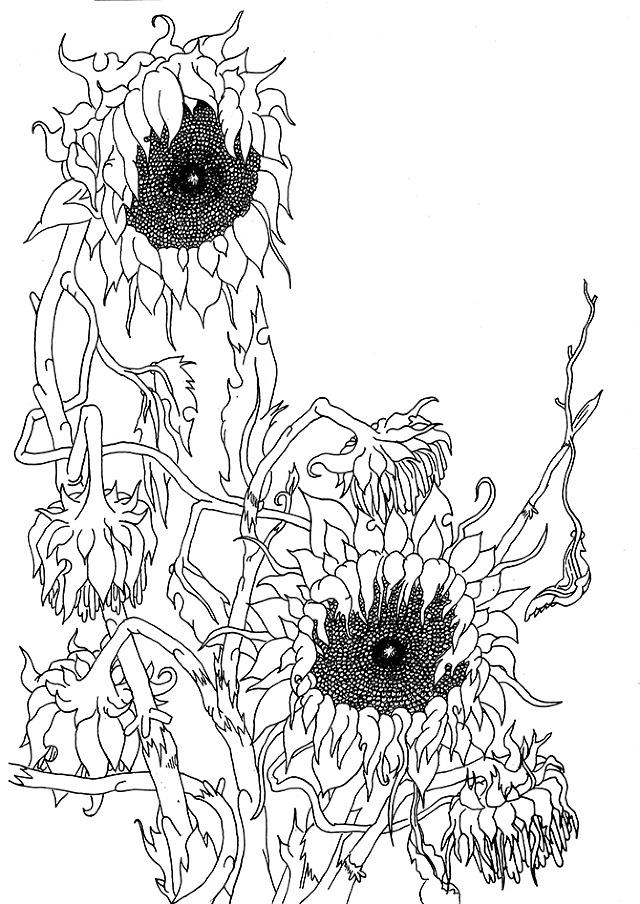 Margin Doodles