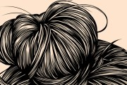 hair study - gaks design