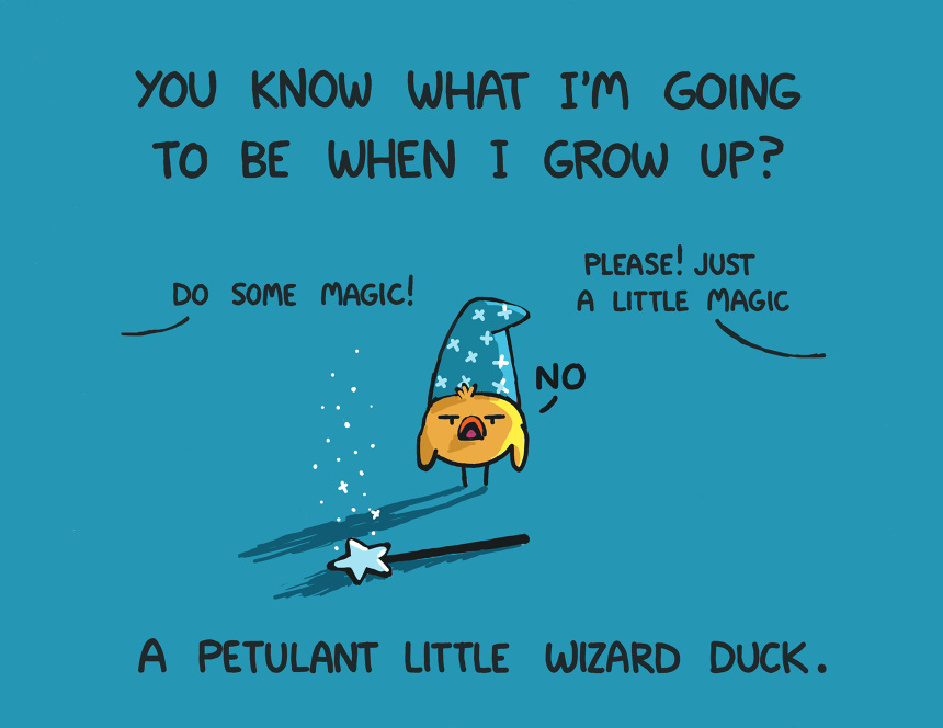 """Petulant Wizard Duck"" Tshirt Idea Sebastien Millon"